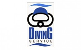 DivingService